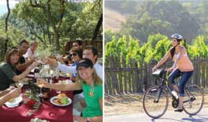 napa-valley-bike-tours